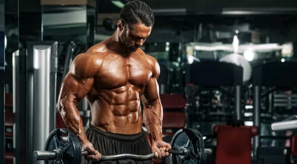 Tập Fitness giúp săn chắc cơ thể, giảm mỡ.