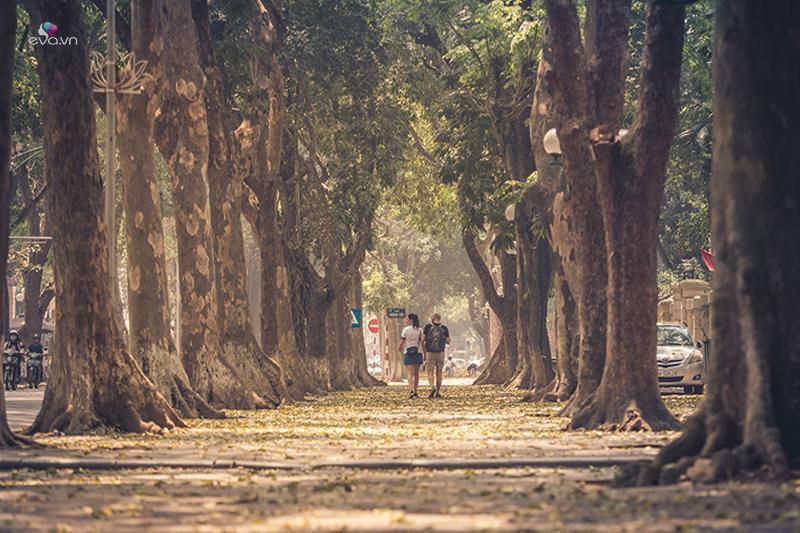 Đường Phan ĐÌnh Phùng là địa điểm hẹn hò lí tưởng