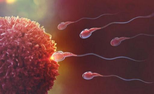 Xuất tinh sớm là một trong những nguyên nhân làm tinh trùng yếu ở phái mạnh