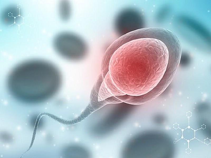 Xét nghiệm tinh dịch đồ kiểm tra chất lượng tinh trùng