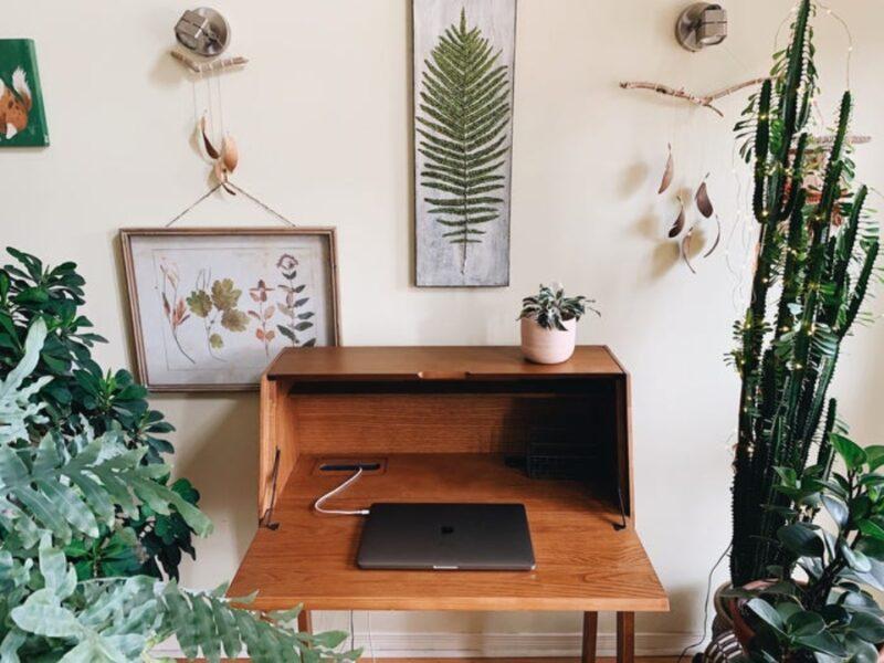 Trang trí văn phòng tại nhà với cây xanh làm sinh động bàn làm việc