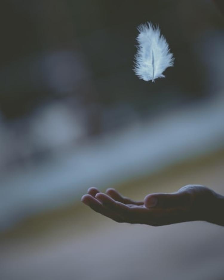 Chọn cách hành động đúng đắn để thoái mái tâm hồn