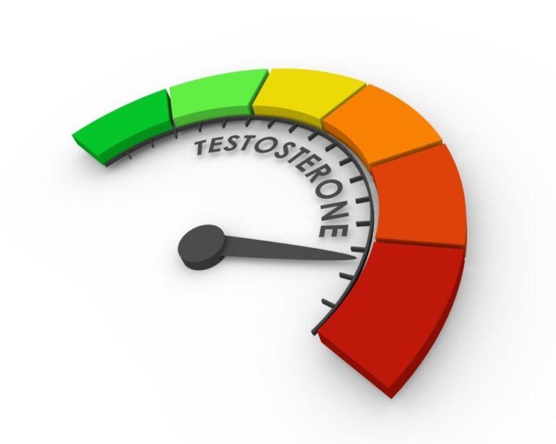 Testosterone là một hormone được sản xuất chủ yếu ở tinh hoàn