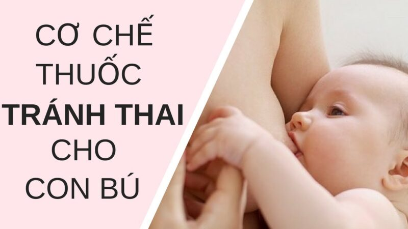 Nguyên lý hoạt động của thuốc tránh thai là gì?